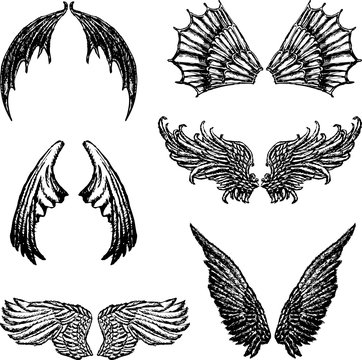 Set of the different demons wings