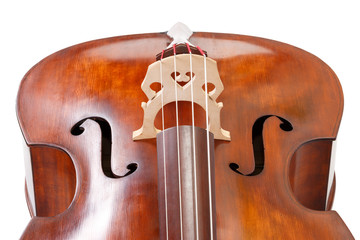 Double bass detail on white