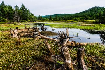 Aershan National Park in China