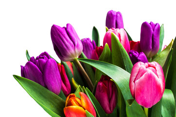 Bouquet with colorful tulips
