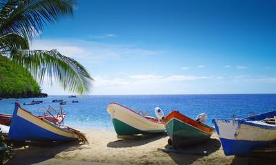 Plage, palmier et bateaux face à la mer des caraïbes. Paysage de la Martinique