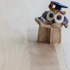 The owl professor