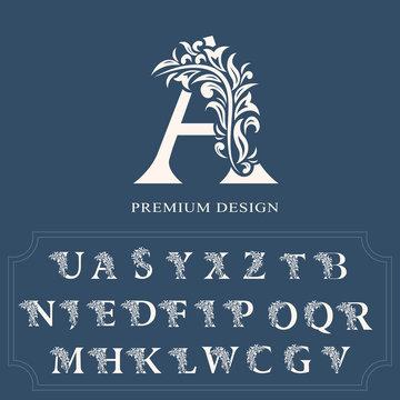 Set of elegant letters. Graceful luxury style. Calligraphic beautiful logo. Vintage drawn alphabet emblem for book design, brand name, business card, Restaurant, Boutique, Hotel. Vector illustration