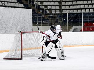 Hockey goalie in the world