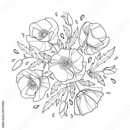 Vector round bouquet with outline poppy flower bunch bud and leaves vector round bouquet with outline poppy flower bunch bud and leaves in black isolated on mightylinksfo
