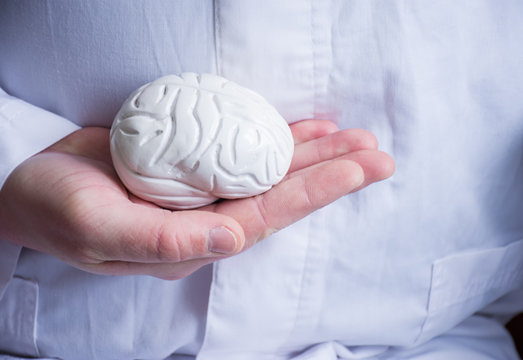 Doctor in white coat holds in his hand in palm of anatomical model of human brain. Concept photo of diagnosis, treatment and prevention of diseases of brain, nerves and nervous system