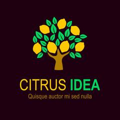 Lemon tree, fresh drink logo vector design. Fruit logo template you can use for product, restaurant and food logo. Vector Illustration. Lemon tree sign icon. Citrus idea
