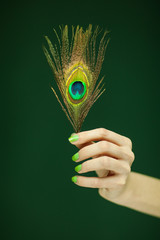 woman hand holding exotic peacock feather, sensual studio shot with green background