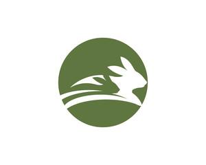 Rabbit Logo template vector