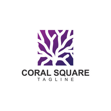 Coral square logo vector design