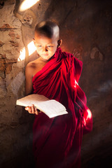 Monk study in temple by read a book