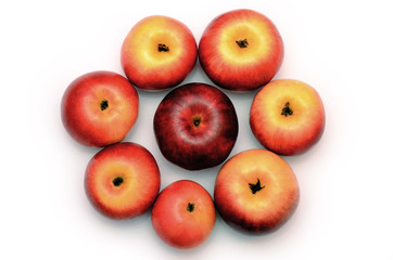 Red-yellow apples in the form of a flower