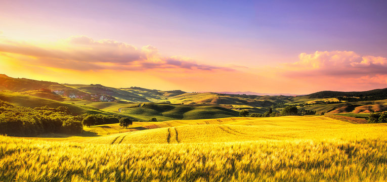 Tuscany spring, rolling hills at sunset. Rural landscape. Whaet, green fields and trees Italy
