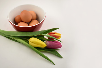 Colorful tulips with Easter Eggs stock images. Easter decoration on a white background. Spring decoration images. Bouquet of colorful tulips