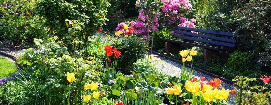 Gartenanlage mit Tulpen und einer Bank Panorama