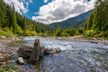 boulders on cascade of the forest river. beautiful landscape in mountains on a bright day. lovely time spent while travel Carpathians