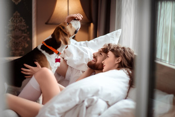Happy family couple lies in bed, plays with favourite dog, care about animal, spend spare time in cozy bedroom and comfortable bed. Female and man have rest together with pet. Relaxation concept