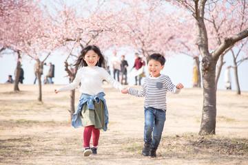桜と笑顔の子供