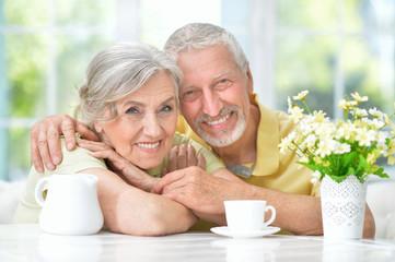 Happy senior couple drinking tea