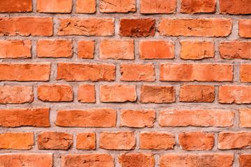 Fototapeta Ceglana ściana