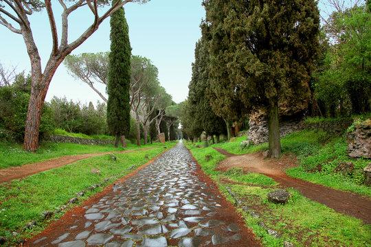 Cobblestones of Rome's Ancient Appian Way