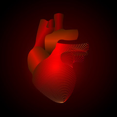 Heart with a point of pain. Stylized transition from a real organ to an X-ray effect. Medical illustration of heart disease