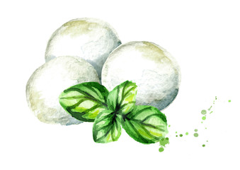Mozzarella cheese and Basil. Watercolor hand drawn illustration, isolated on white background