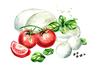 Mozzarella cheese with Basil and tomatoes. Watercolor hand drawn illustration, isolated on white background