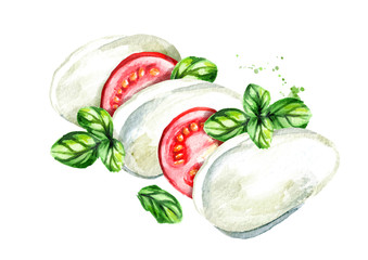 Mozzarella cheese with tomatoes and Basil. Watercolor hand drawn illustration, isolated on white background
