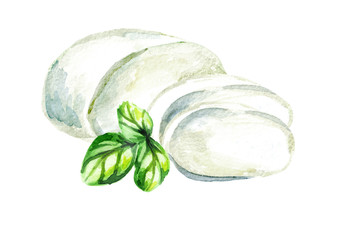 Mozzarella cheese. Watercolor hand drawn illustration, isolated on white background