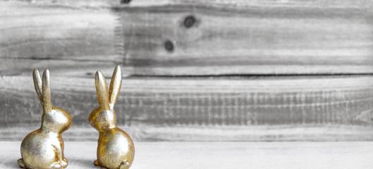 Zwei Hasen, Osterhasenpaar, Breitbild mit Freiraum