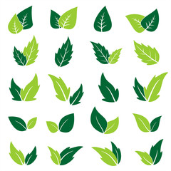 Green leaf icons set. Vector graphic illustration.