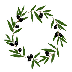 black olive wreath with green leaves illustration vector