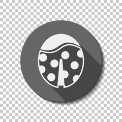 Ladybug icon. White flat icon with long shadow in circle on transparent background