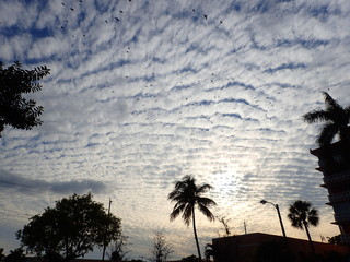Rippling Clouds