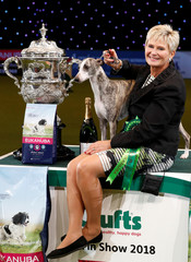 Tease, a Whippet, stands with owner Yvette Short after winning the best in show during the final day of the Crufts Dog Show in Birmingham