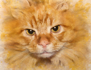 Watercolor pattern of a red-headed cat pet colorful illustration