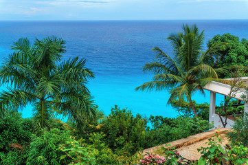 glorious view on the Caribbean azure sea and green palm trees