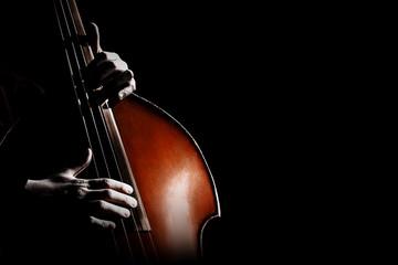 Poster Muziek Double bass. Hands playing contrabass player