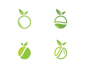 melon logo template vector design
