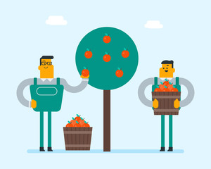 Young caucasian white gardeners collecting apples in the bsket. Farmers harvesting apple harvest in the garden. Vector cartoon illustration. Farming and gardening concept.
