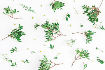 Flowers composition. Pattern made of fistachio leaves and chamomile flowers on white background. Flat lay, top view