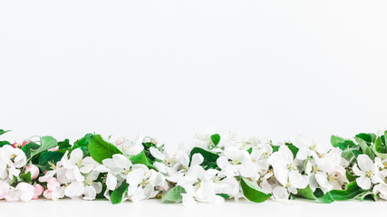 Flowers composition. Border made of apple tree flowers on white background. Flat lay, top view, copy space