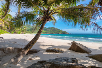 Wild tropical beach on Paradise island. Fashion travel and tropical beach concept.