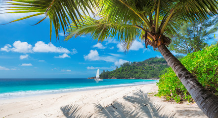 Fototapete - Sandy beach with palm trees and a sailing boat in the turquoise sea on Paradise island. Fashion travel and tropical beach concept.