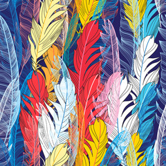 Graphic pattern multicolored feathers