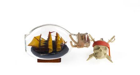 skull with bones, pirate symbol