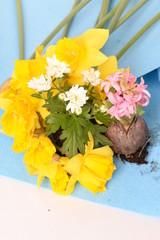 Dekoracja kwiatowa wielkanocno - wiosenna