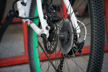 Bicycle rear hub wheel