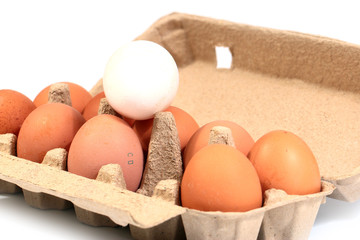 large chicken eggs in a cardboard box